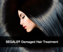 segals-solutions-damaged-hair-icon